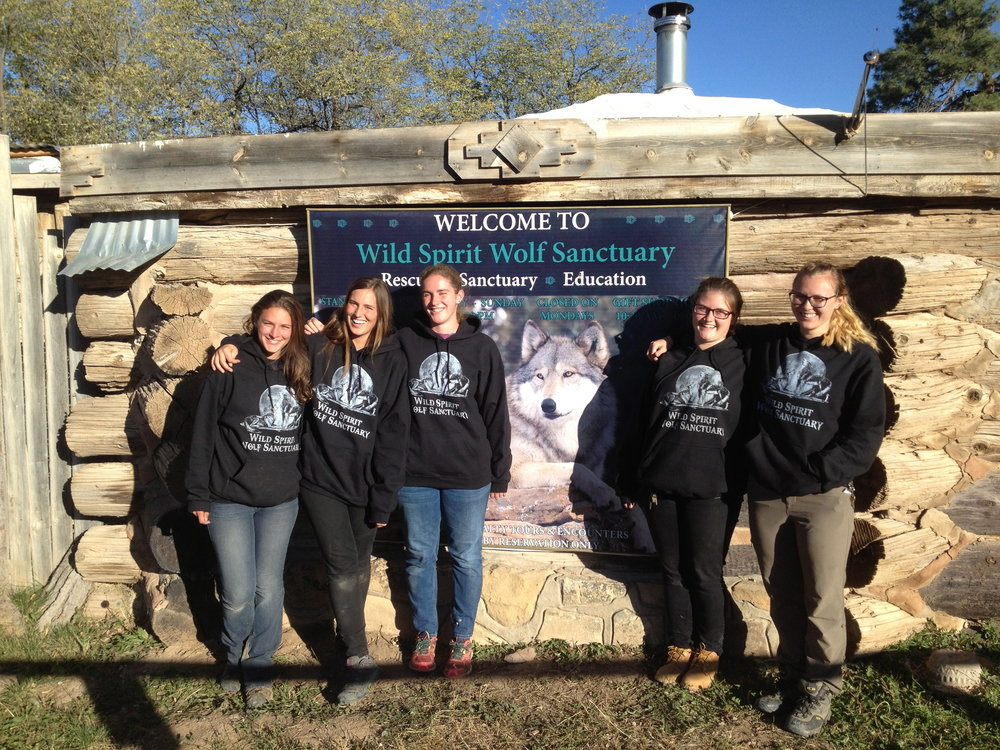 L to R: Kendra, Patricia, Jenna, Megan and Meg modeling new Wild Spirit sweatshirts outside of the gift shop.