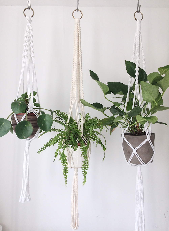 Pretty Little Knots Hanging Plants