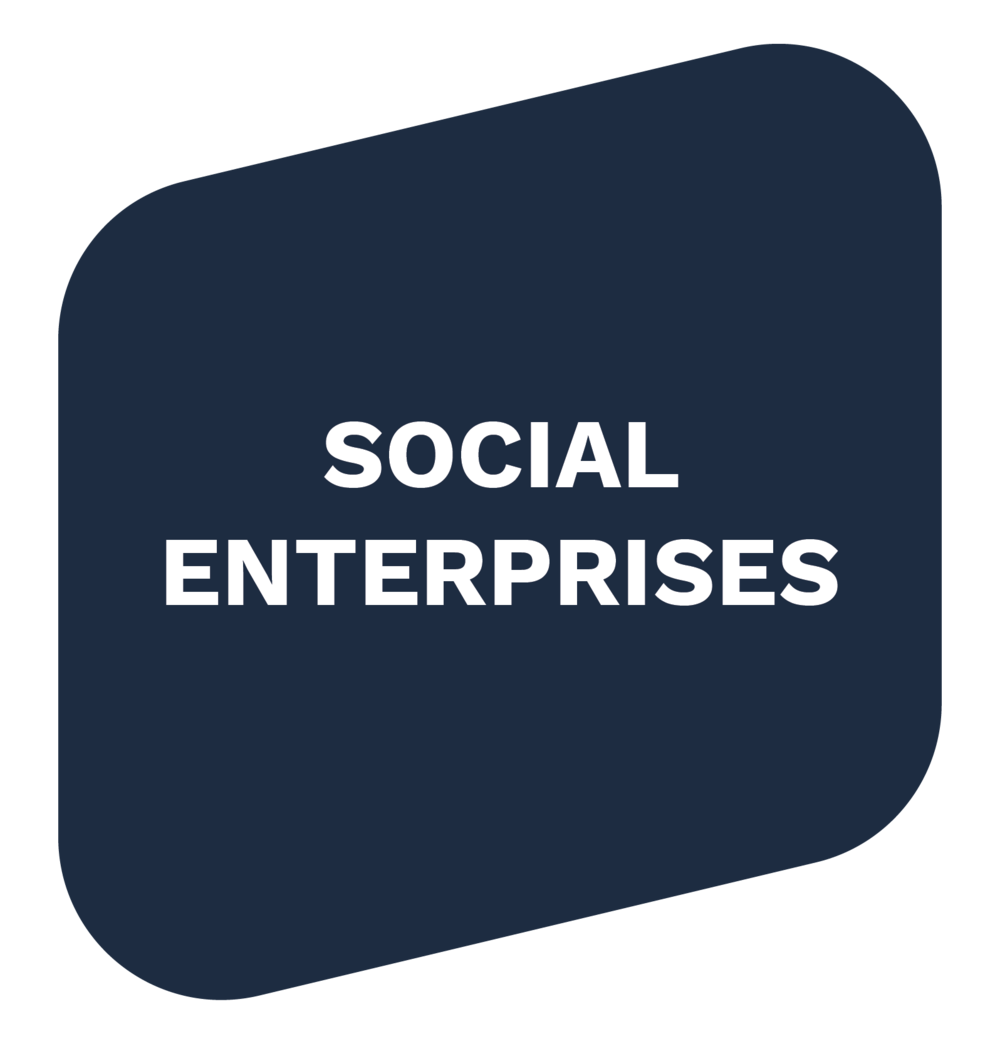 Social-Enterprise-01.png