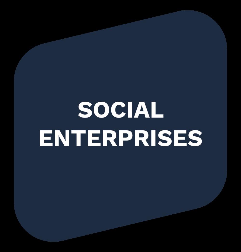 Social-Enterprise-01.png
