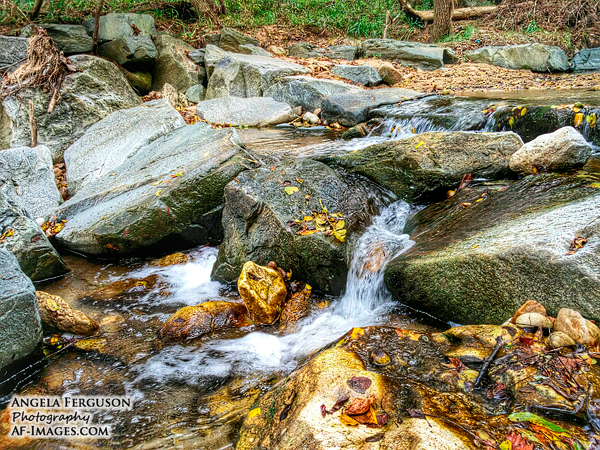 Stream, Baltimore, MD. (Copyright Angela Ferguson Photography)
