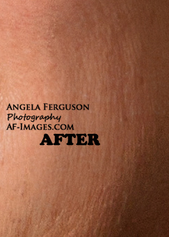 Sample of wrinkles and skin retouching. (Copyright Angela Ferguson Photography 2015)