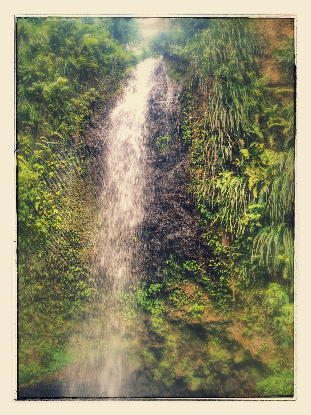 Waterfall, St. Lucia. (Copyright Angela Ferguson Photography 2015)