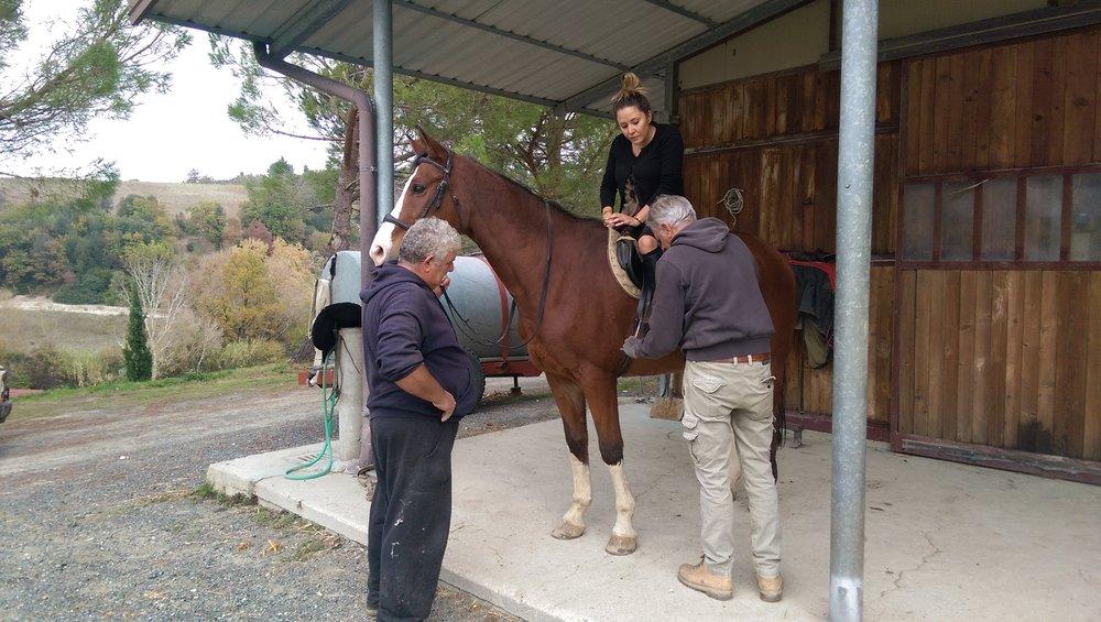 Agriturismo Maramaldo horseback riding