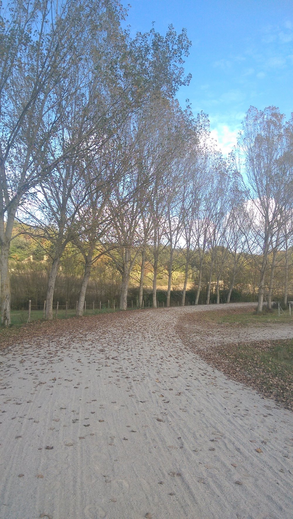 Agriturismo Maramaldo view 3