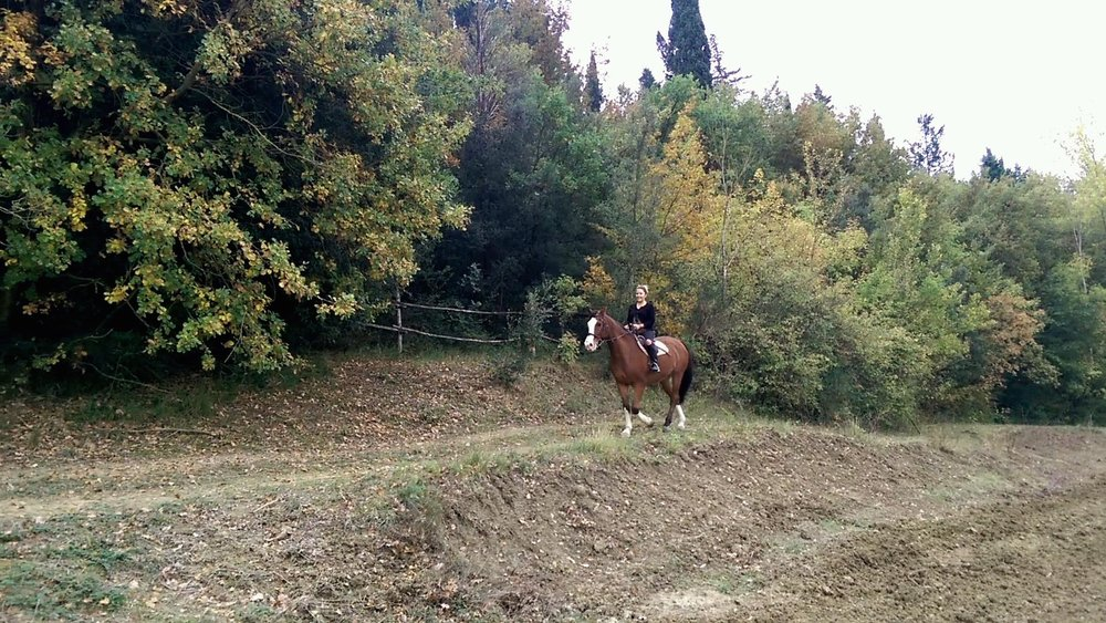 Horseback riding at Agriturismo Maramaldo
