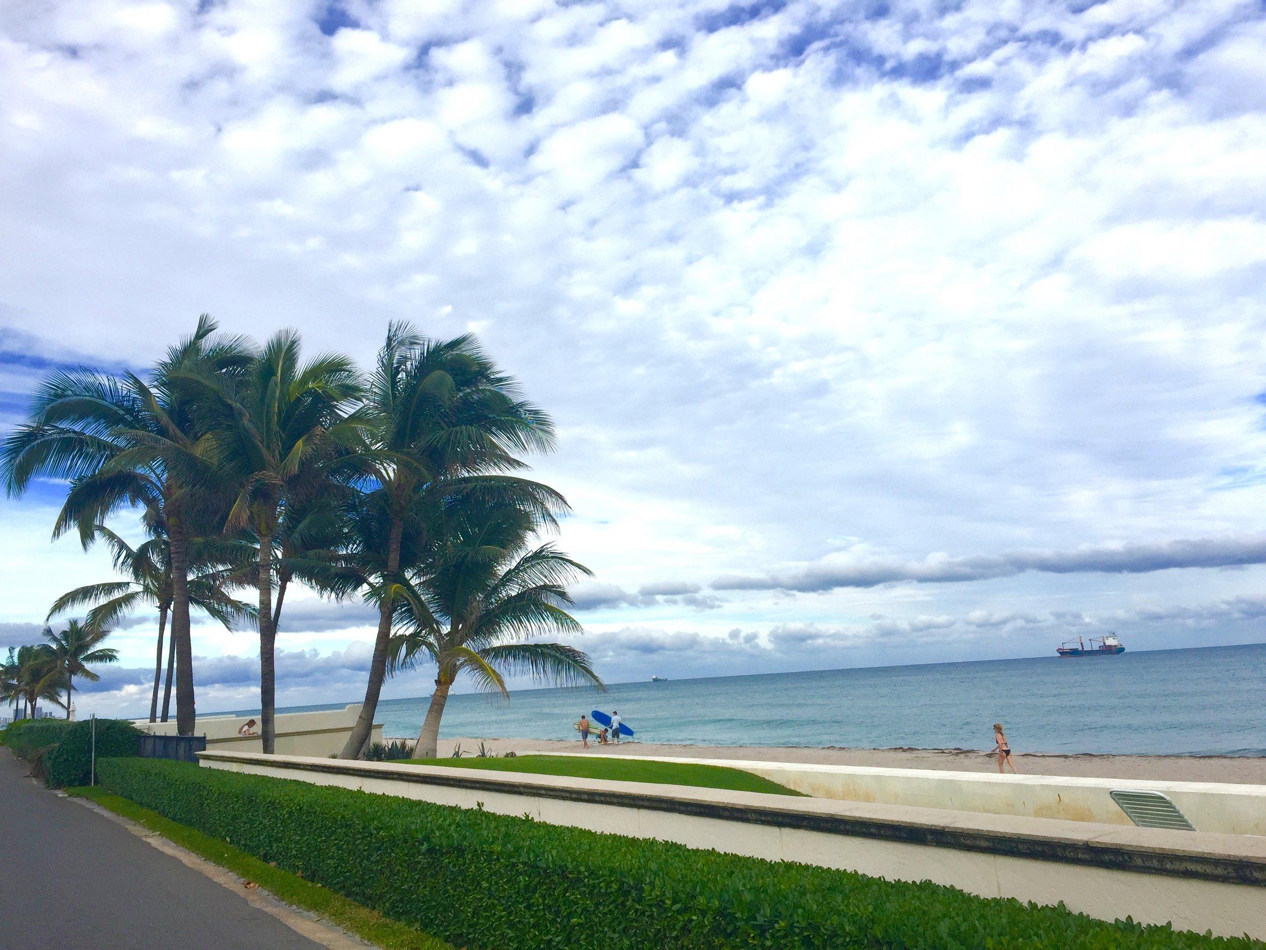 palm beach island 3