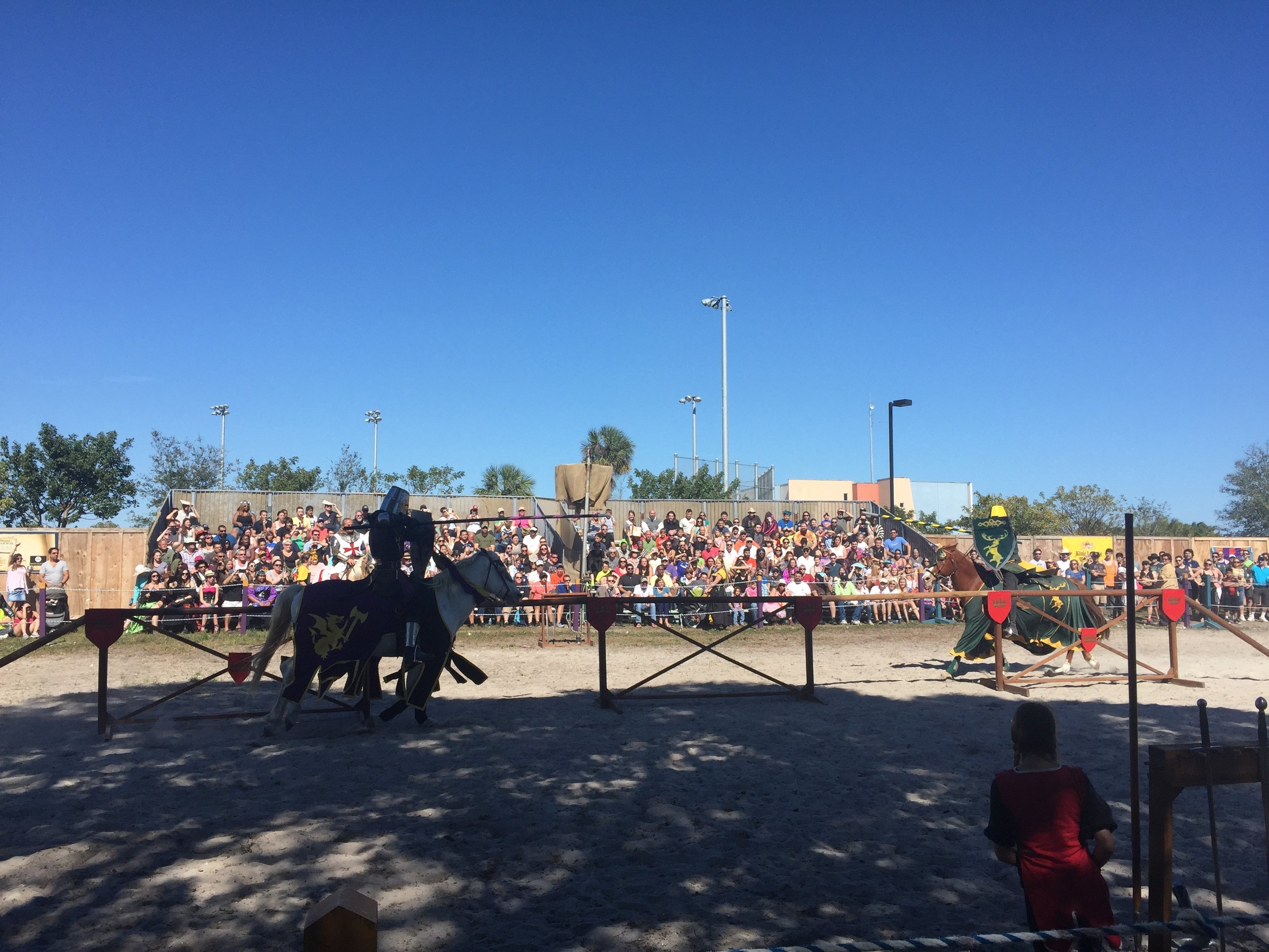 rf horses