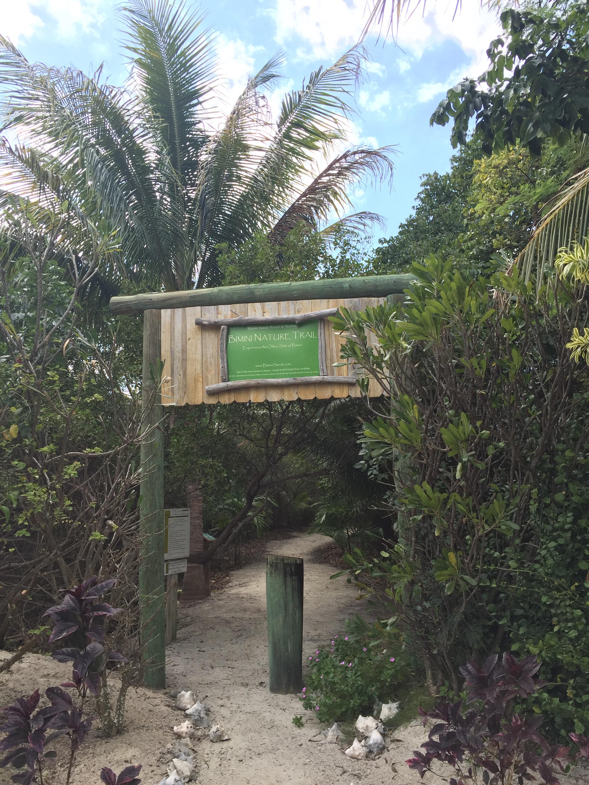 bimini nature trail