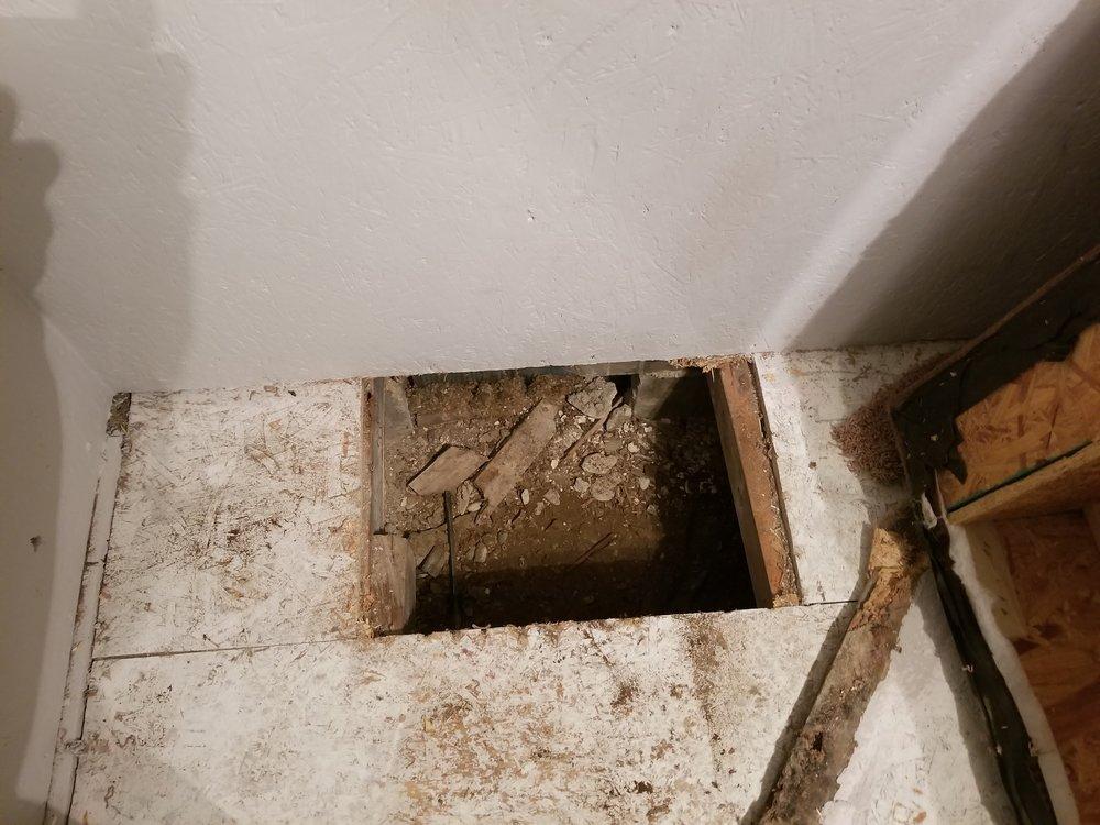 Trap door 1.jpg