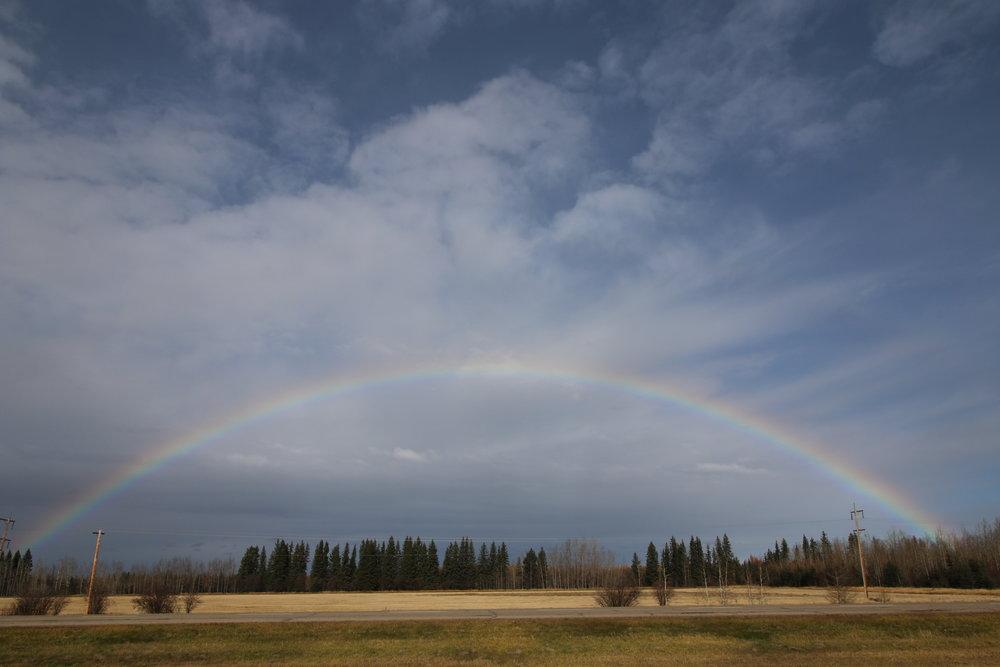 a rainbow,