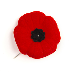 The poppy pin ^