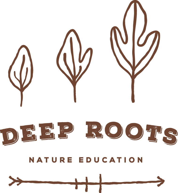 Deep Roots Nature Education