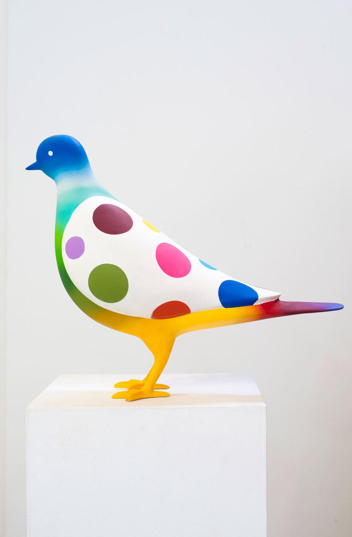 Pigeon, 2018