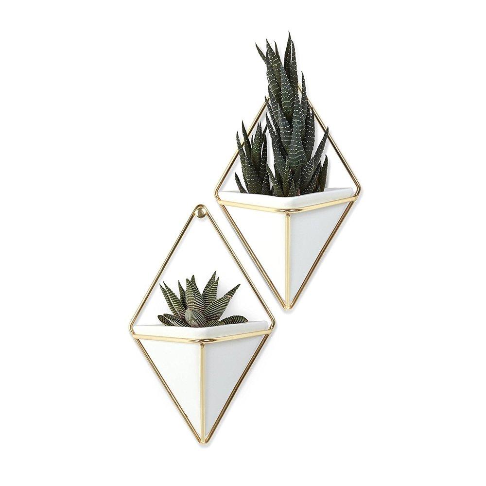 Copy of Plant Hangers - $16.99