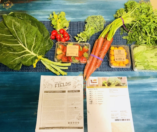 My CSA contents spread out on the table.
