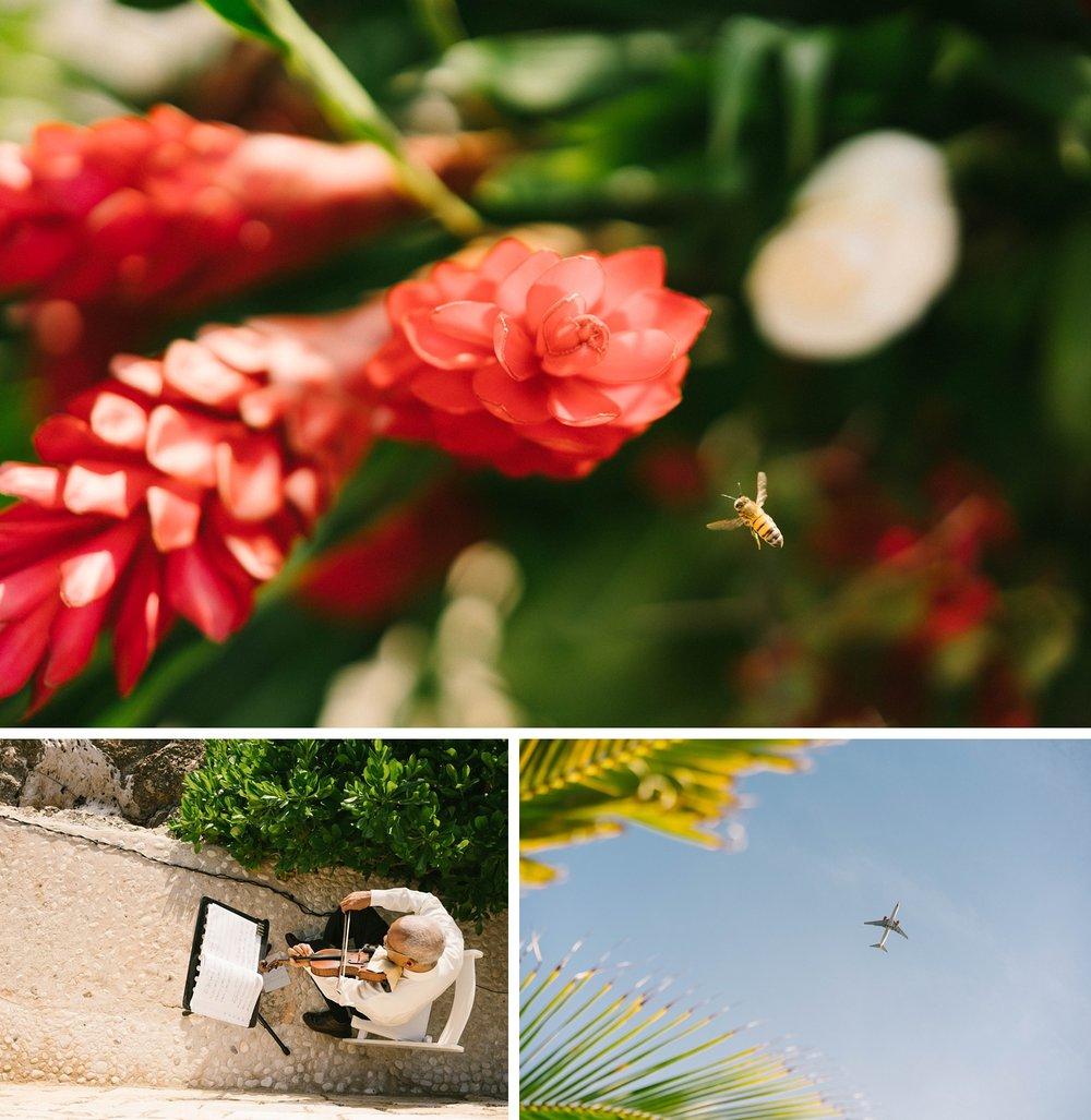 0020Luxury_Jamaica_Wedding_Round_Hill_Resot.JPG