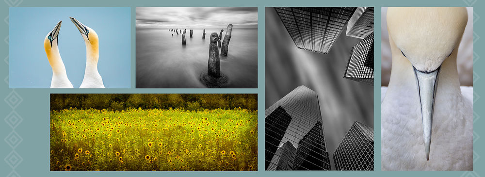 large-appixpro_banner_2_landscape.jpg