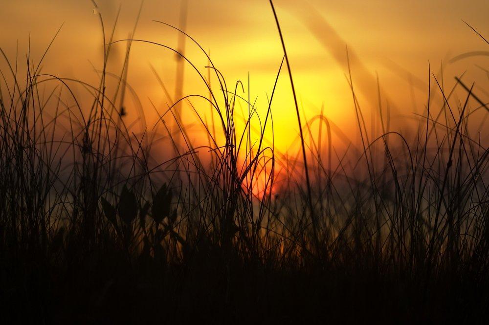 mindfulness meditation classes - THE YOGA STUDIO NORTHMONDAYS 6:30pm - 7:45pm