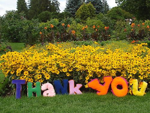 THANK YOU in Garden #3