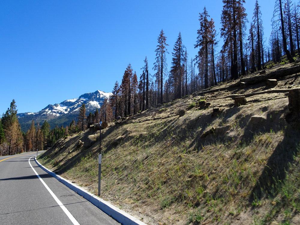Bye Tahoe :(