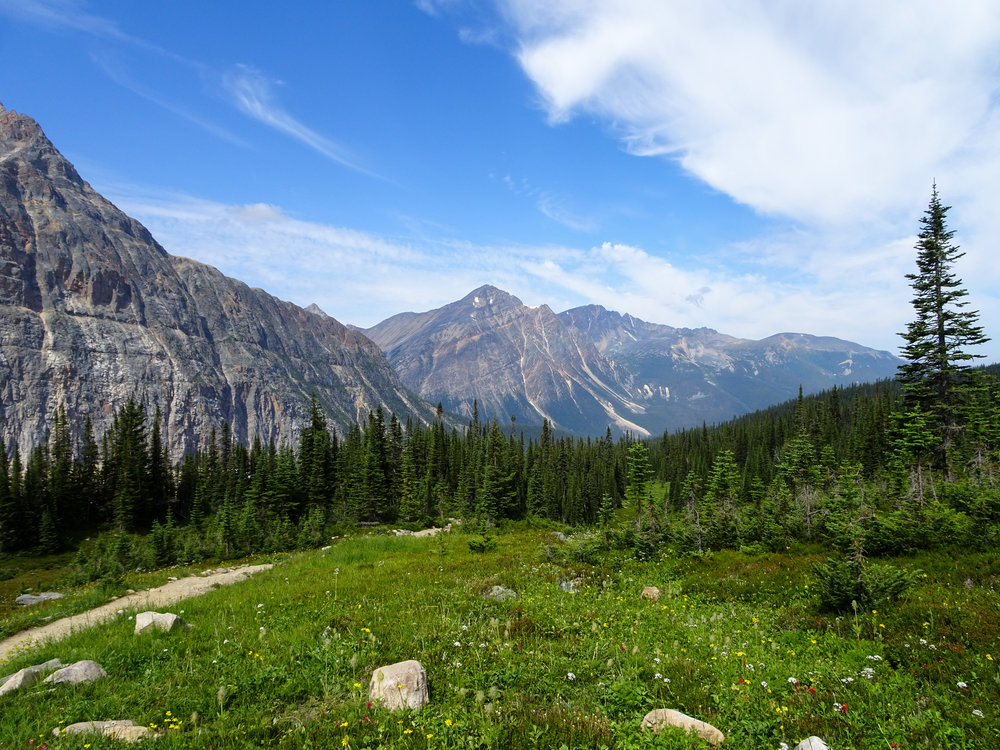 Mount Edith Cavell Views