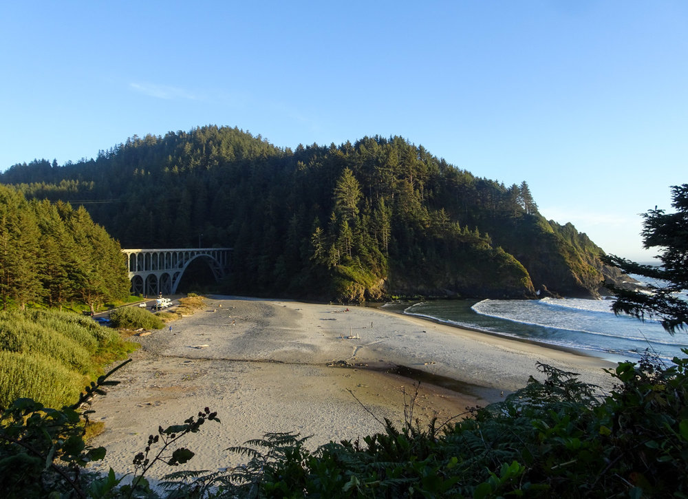 Hiking up the Heceta Head Trail