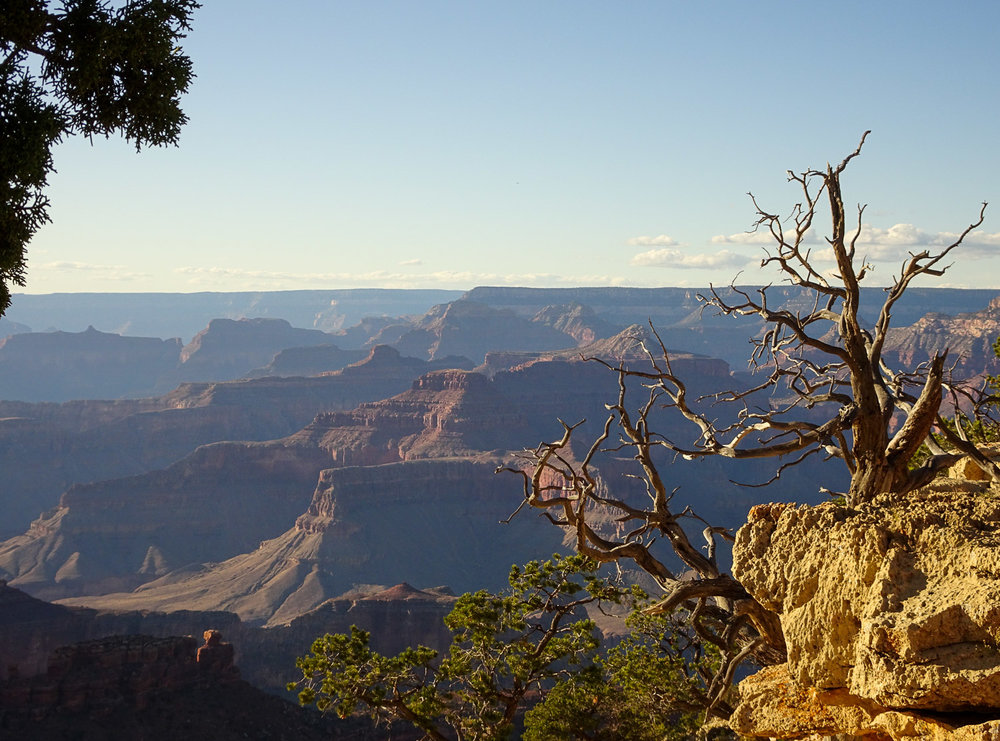 GrandCanyon_Blog (18 of 37).jpg
