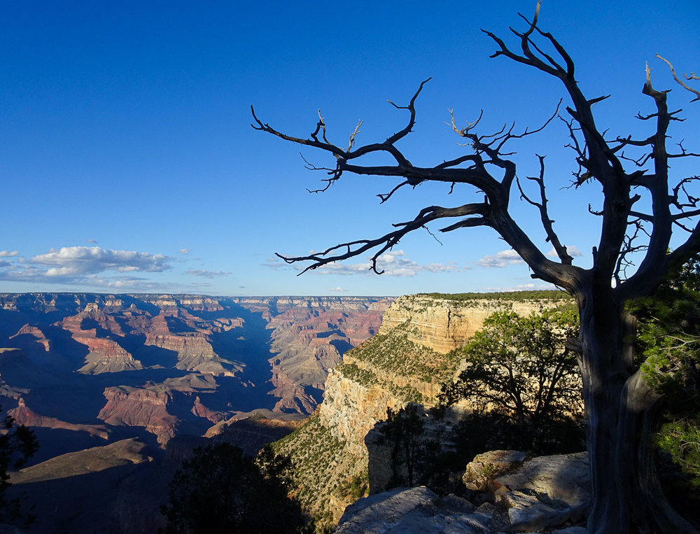 GrandCanyon_Blog (20 of 37).jpg