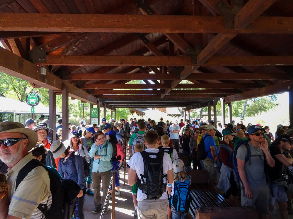 The line for the free Zion Park shuttle