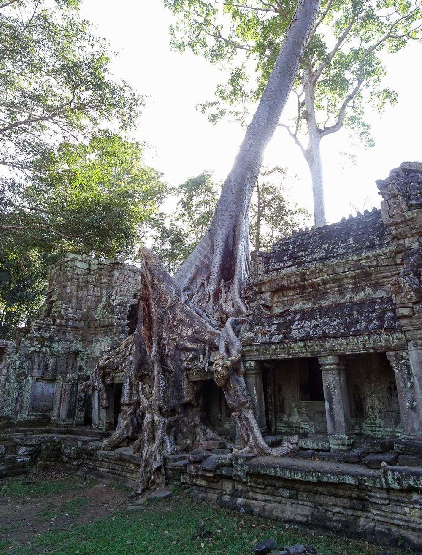 AngkorWat_Blog (95 of 129).jpg