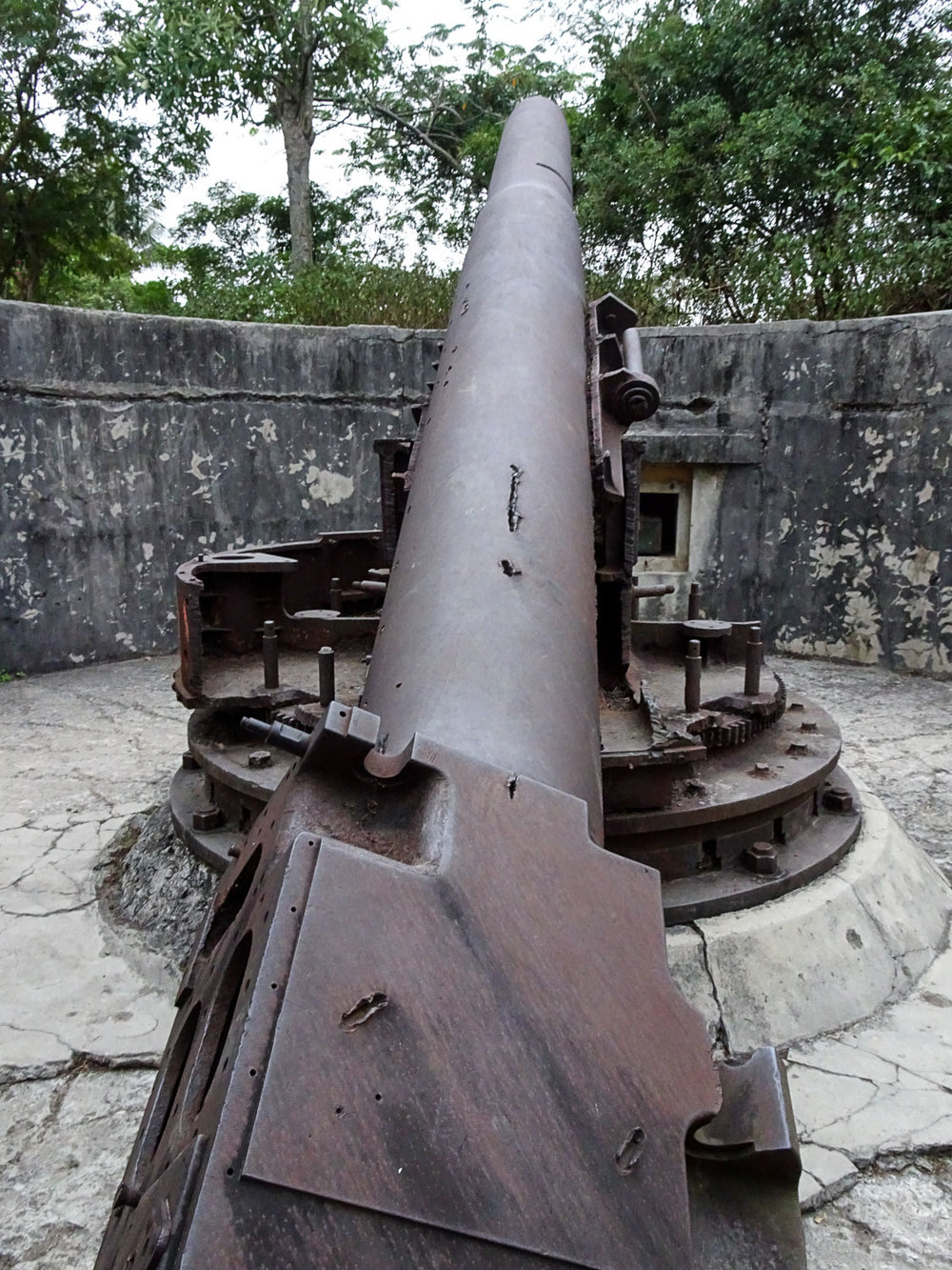 Cannon.jpg