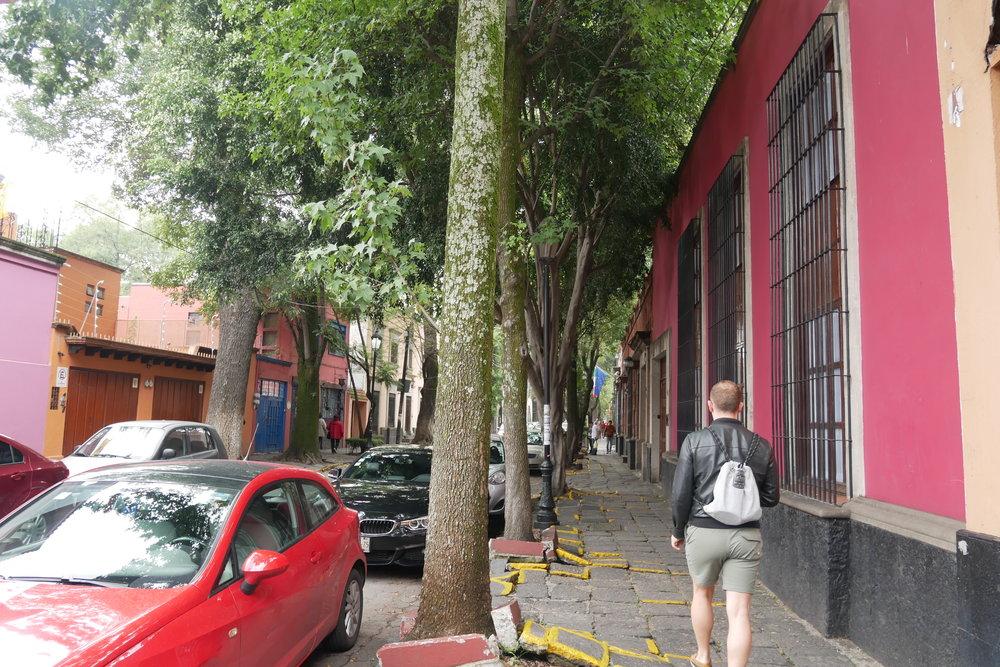 0 Sun Mexico City Coyocan Nick Street.JPG