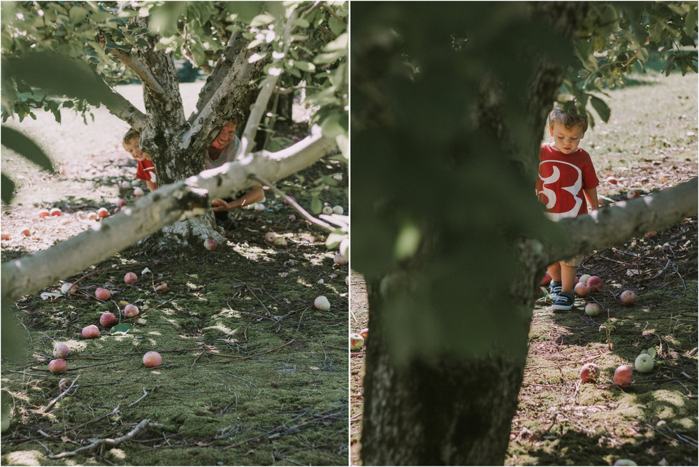 Apple Picking Wisconsin Documentry Photographer 3.jpg