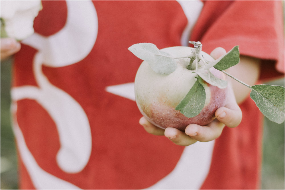 Apple Picking Wisconsin Documentry Photographer 8.jpg