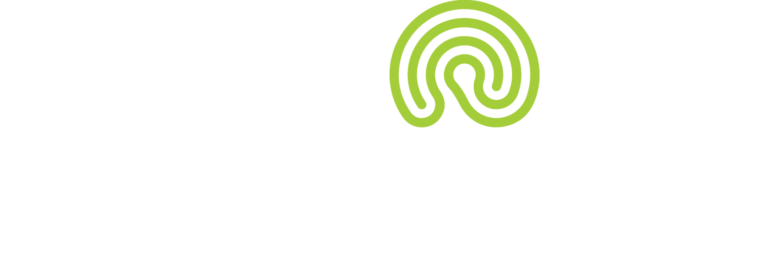 The Labyrinth Consulting Group