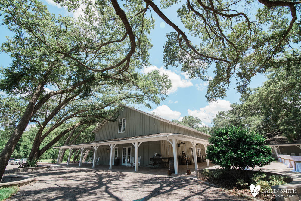 Bethany_Kyle_Bowing_Oaks_Plantation_Wedding_Photography_0001.jpg