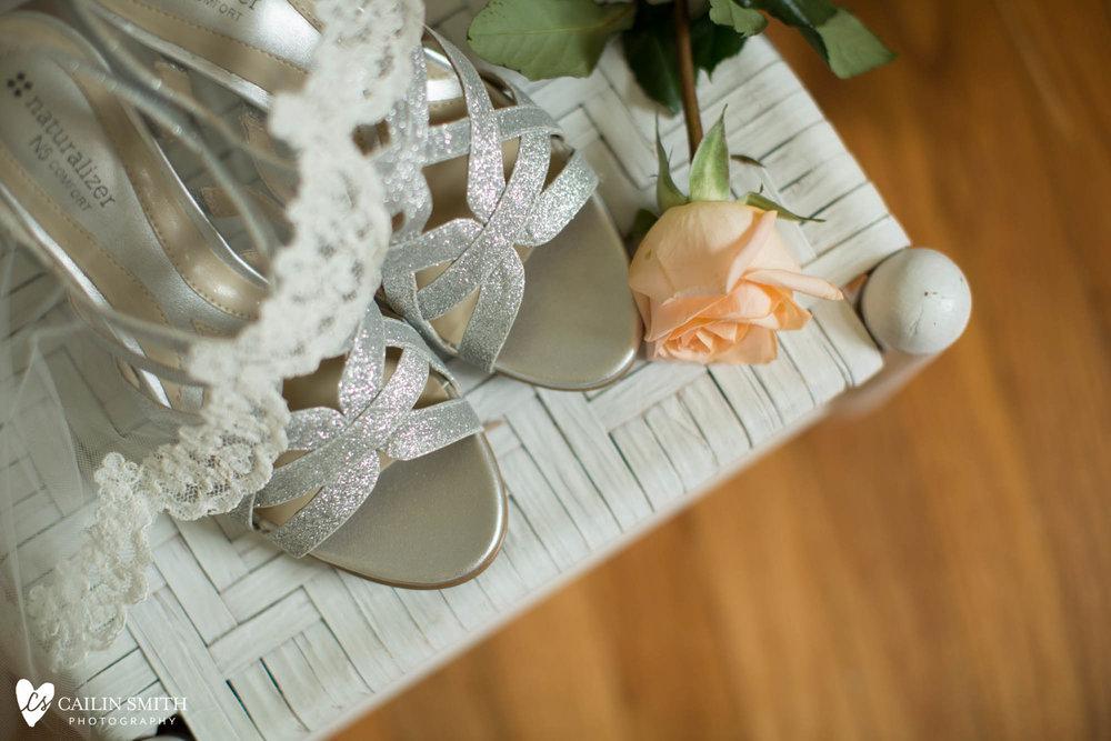 Nicki_Craig_Tavares_Pavilion_On_The_Lake_Wedding_Photography_0005.jpg
