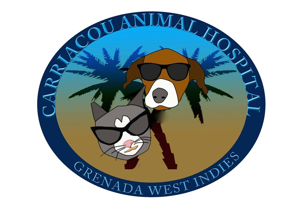 Carriacou Animal Hospital - Founded in 2012, the Carriacou Animal Hospital is an independent non-profit, organization that provides preventative and basic health care to small animals. Their program offers spays and neuters for dogs and cats at a nominal fee, which helps prevent dogs and cats from straying, having unwanted puppies or kittens and getting into vehicle accidents.They also provide routine veterinary care, health examinations, medical treatment and general surgery. Ticks and fleas as well as ehrlichia and heart worm are major problems on Carriacou which is why they take special care in the prevention and treatment of these diseases and provide education to the owners.CAH does not receive public funding and depends on volunteer veterinarians. CAH is stocked through the generous donations of medicines and medical supplies that are generated from the efforts of the visiting veterinarians as well as donations from friends who have visited CAH on holiday.