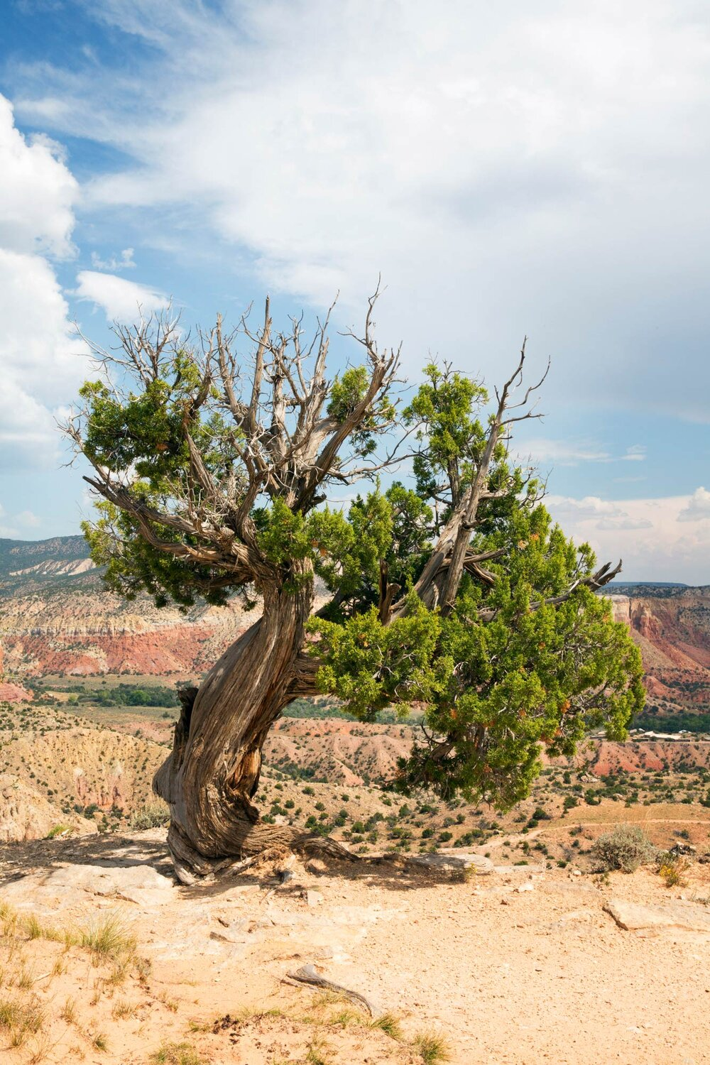 ghost-ranch-abiquiu-new-mexico.jpg