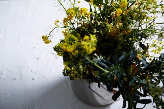 BrassicaFlowers-04.jpeg