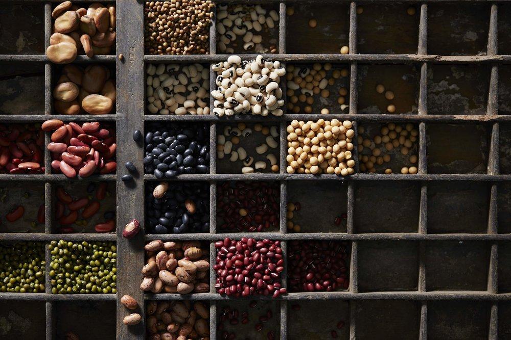 Beans-01.jpg