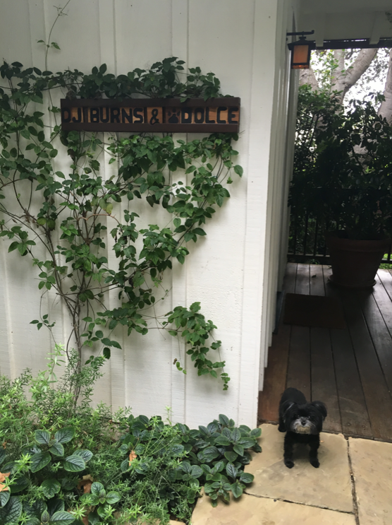 Burns' beloved pup Dolce, next to the personalized entrance to Oak Grove Cottage at San Ysidro Ranch