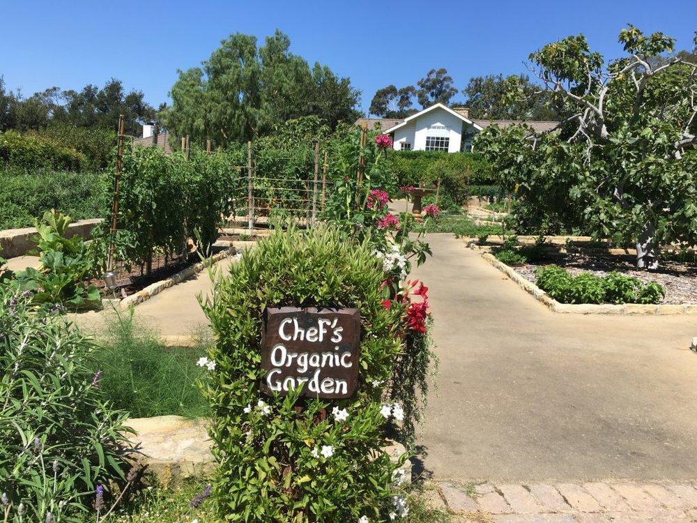 Chefs' garden at the ranch