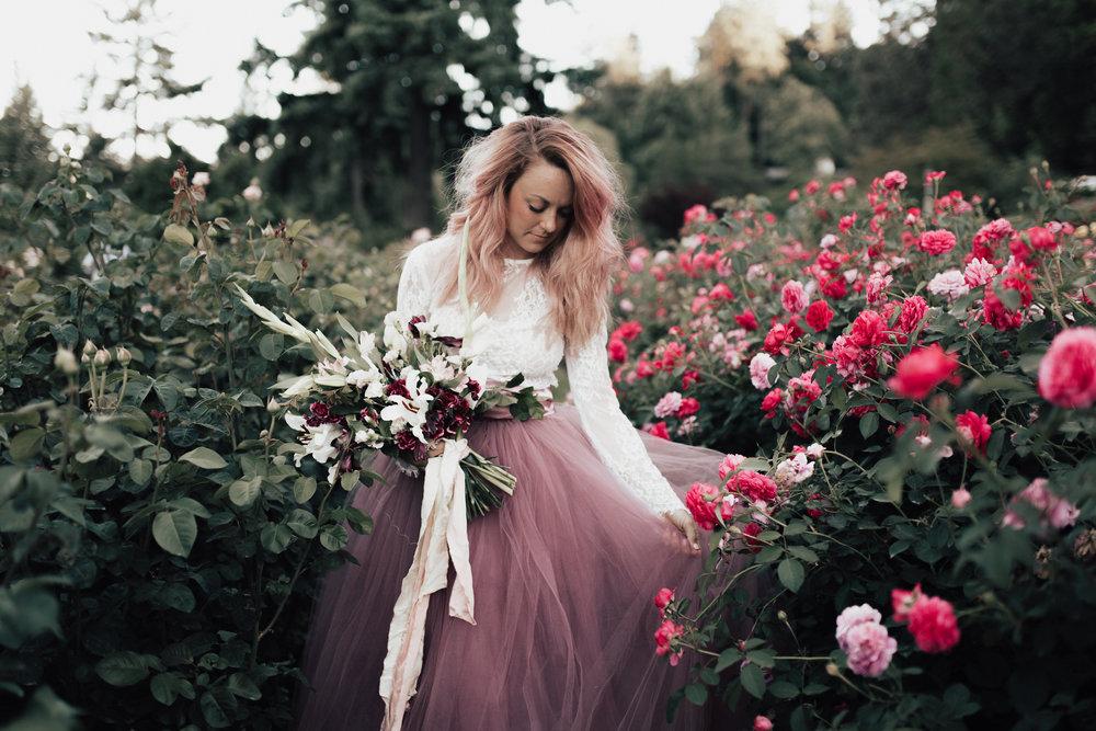 katinicolephoto_roses-3.jpg