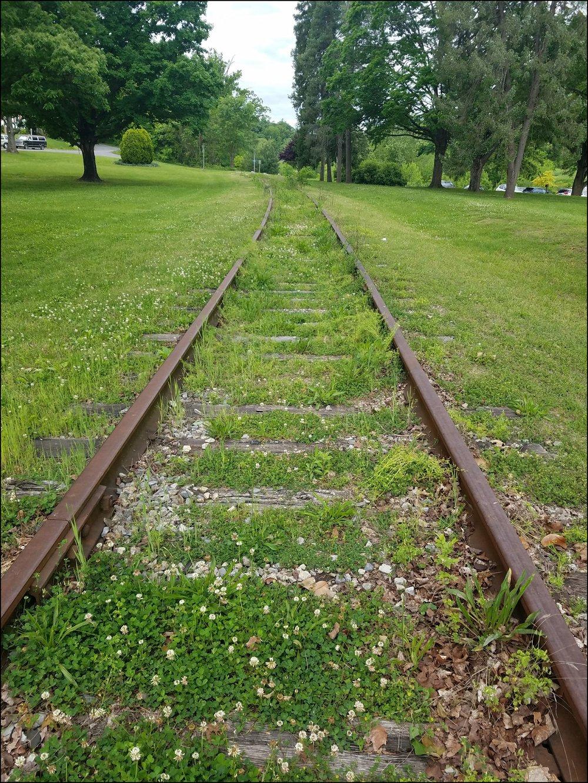 Tracks through Wasena Park.