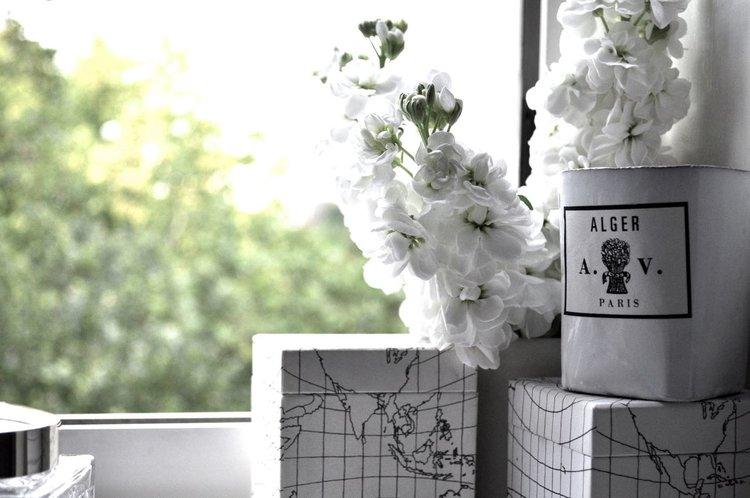 Saturday flowers...