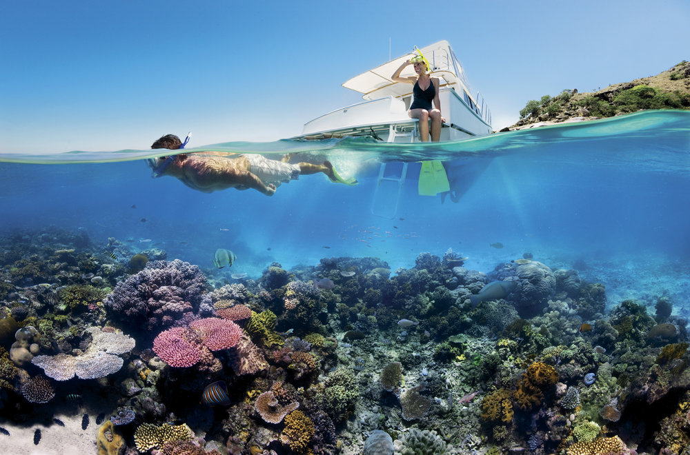Reef_Snorkelling_on_the_Great_Barrier_Reef.jpg