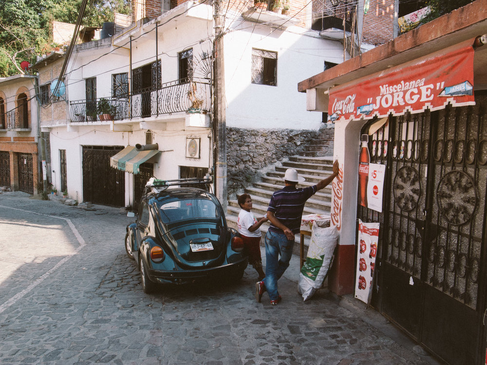Taxco Beetles-8.jpg