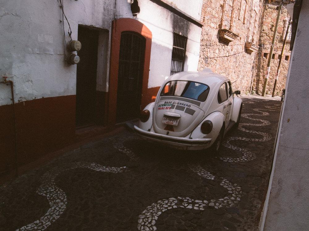 Taxco Beetles-5.jpg